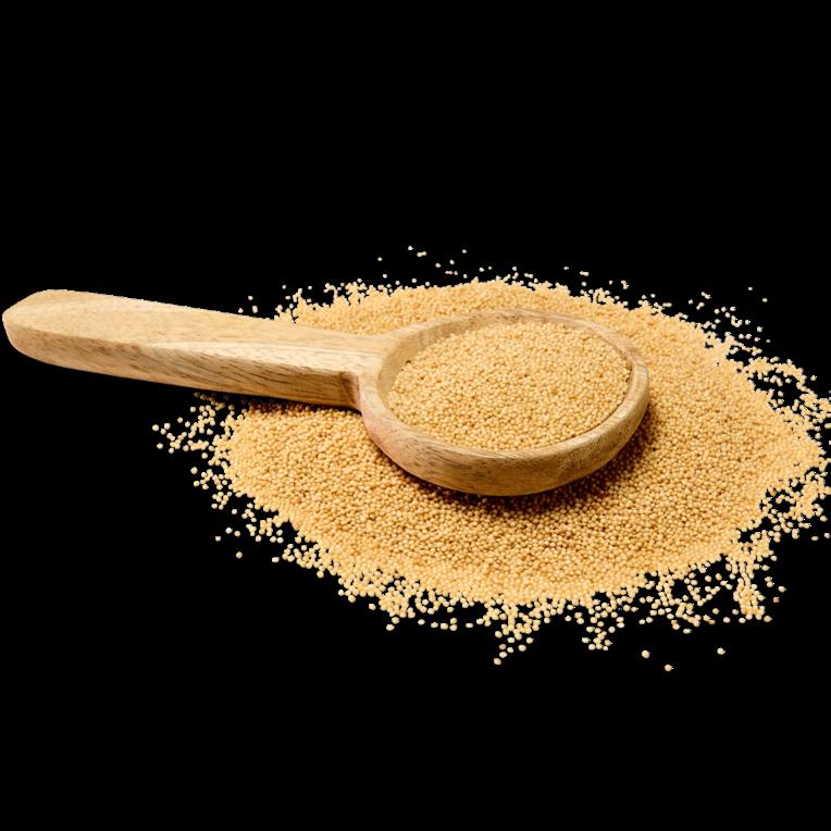 Ancient Grains - Sorghum